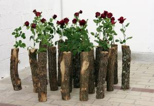 Alexandra Guillot, mon amie la rose, bûches, roses, dimension variable, 2009 © Jean-Baptiste Ganne